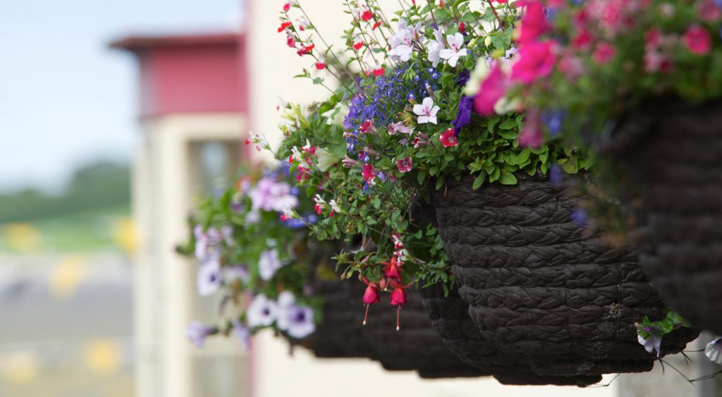Helston Flower Baskets