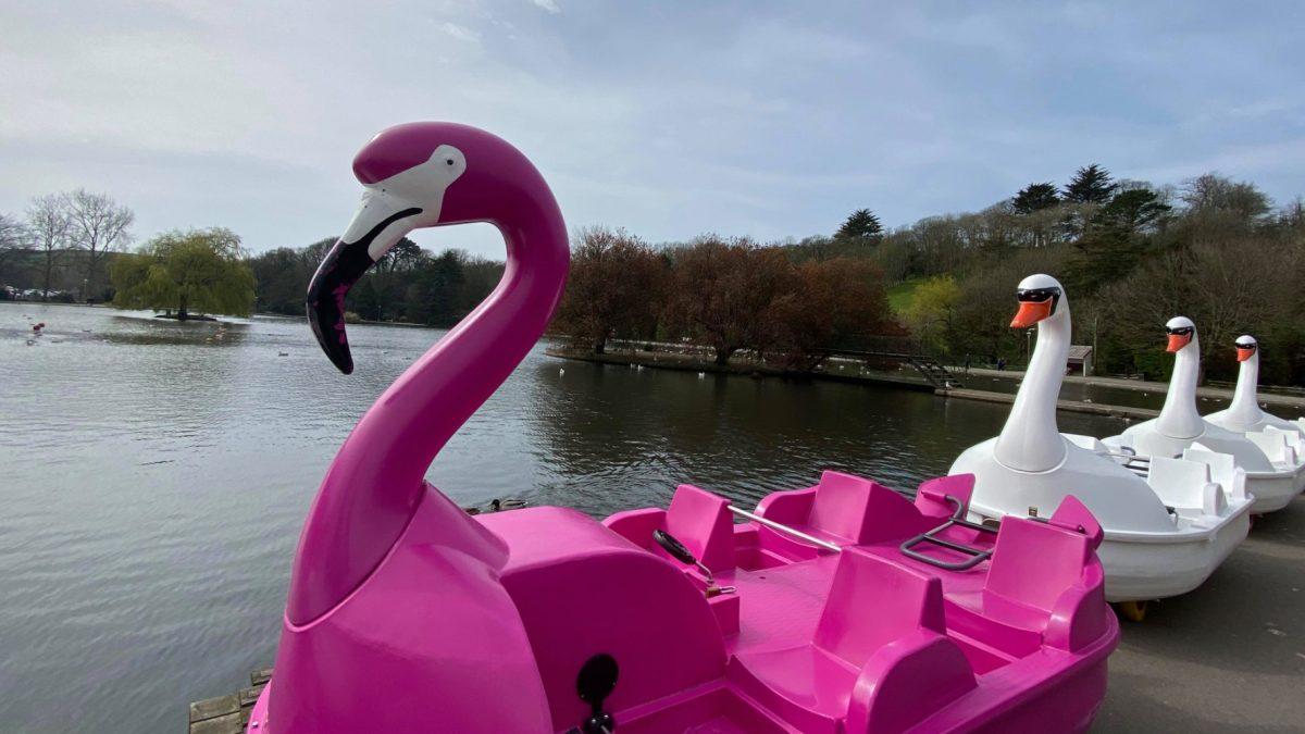 Lakeside Boat Hire